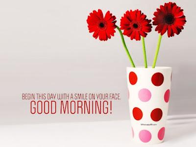 flower pot good morning wallpaper for whatsapp