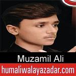 https://www.humaliwalyazadar.com/2018/09/muzamil-ali-nohay-2019.html