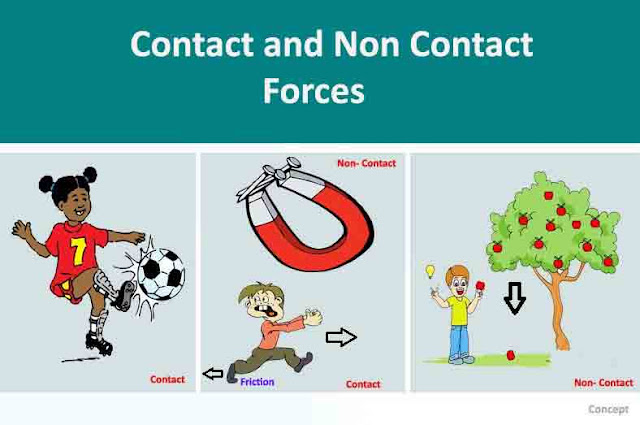 Types of - [Contact Force, Non-Contact Force (s)] - Examples