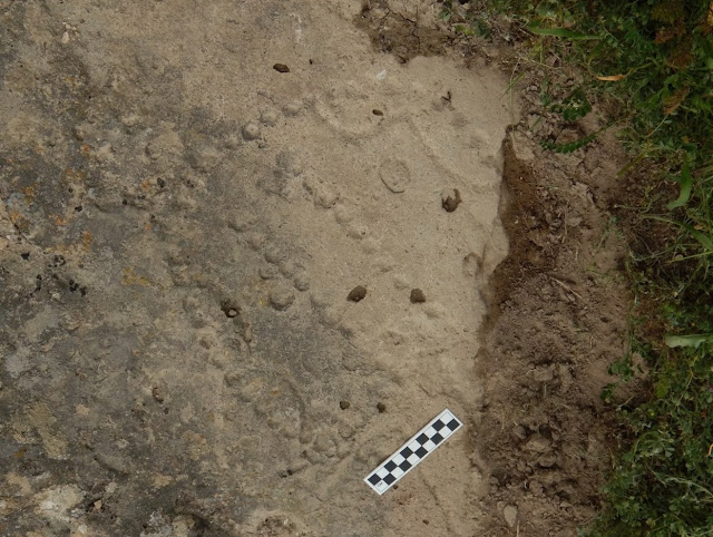 4,000-year-old board game discovered in floor of shelter in Azerbaijan
