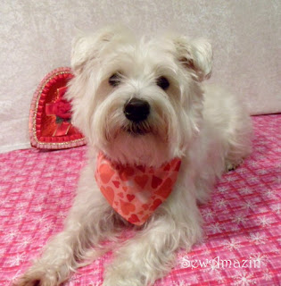 Red Valentine Hearts Bandana Collar Slipcover