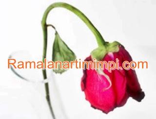 Arti Mimpi Bunga Anggrek Layu