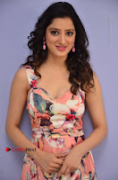 Actress Richa Panai Pos in Sleeveless Floral Long Dress at Rakshaka Batudu Movie Pre Release Function  0047.JPG