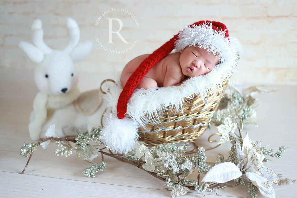newborn book bebê