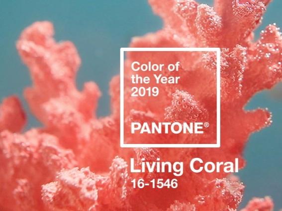 El color del 2019 según Pantone: Living Coral