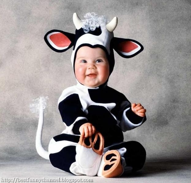 Baby steer. Baby White Teddy Bear.  sc 1 st  Best funny channel & Funny baby pictures 8. Baby in costumes.
