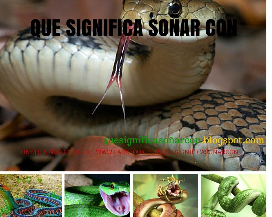 soñar con serpientes pequeñas