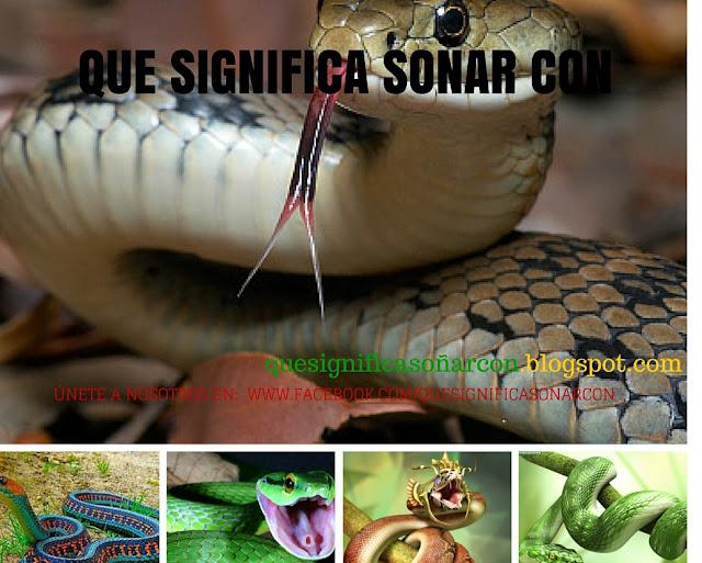cual es el significado de ver serpientes y culebras