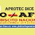 APROTEC DICE: NO + AFP; Plebiscito Nacional