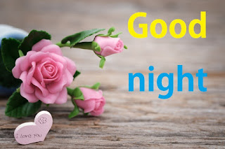 good night pink rose images