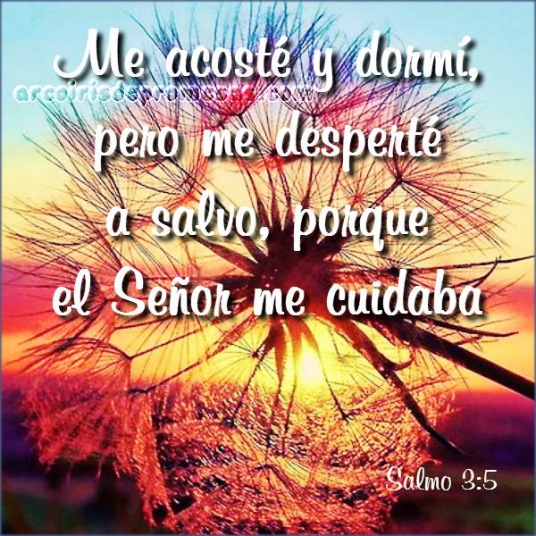 agradecemos el cuidado de dios oración de agradecimiento a dios
