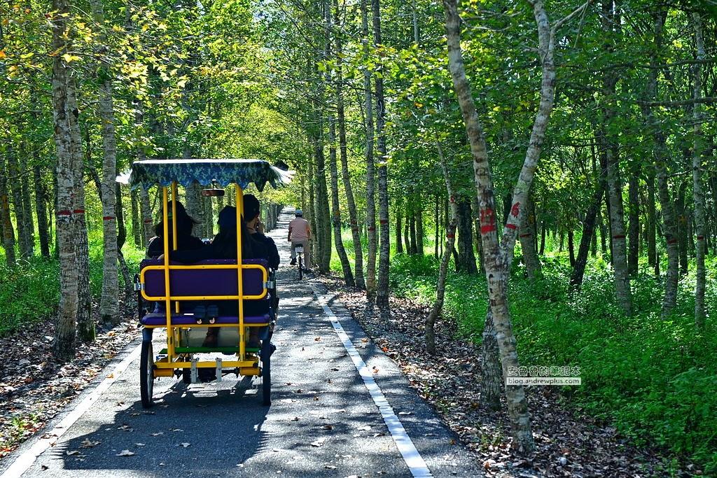 花蓮旅遊必訪景點,大農大富平地森林園區,大農大富,大農大富看螢火蟲,森林自行車道