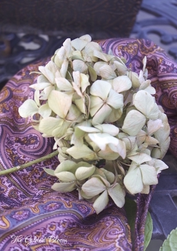 How to Make a Hydrangea Wreath- www.gildedbloom.com