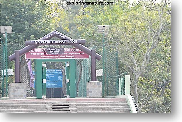 Tourist Lodge at Sundarban National Park