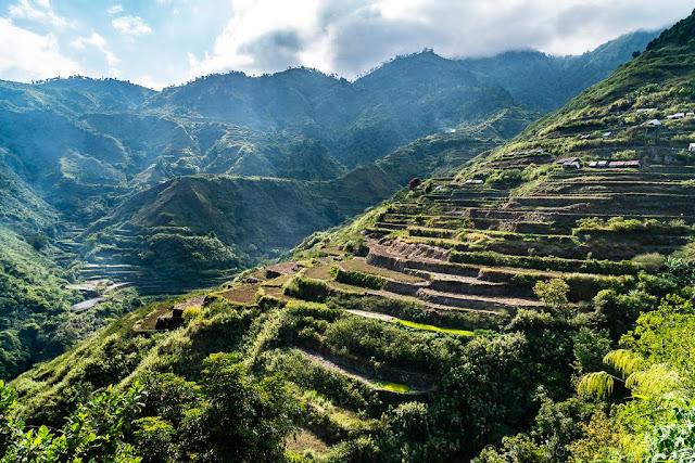 Cordillère-Buscalan-Kalinga-Philippines