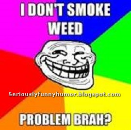 I don't smoke weed. Problem brah? Troll fun meme