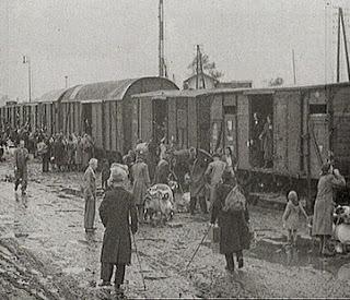 Долгое время пропагандисты холокоста использовали это и другие фото как «доказательство» действий против евреев, хотя на самом деле жертвами были немцы