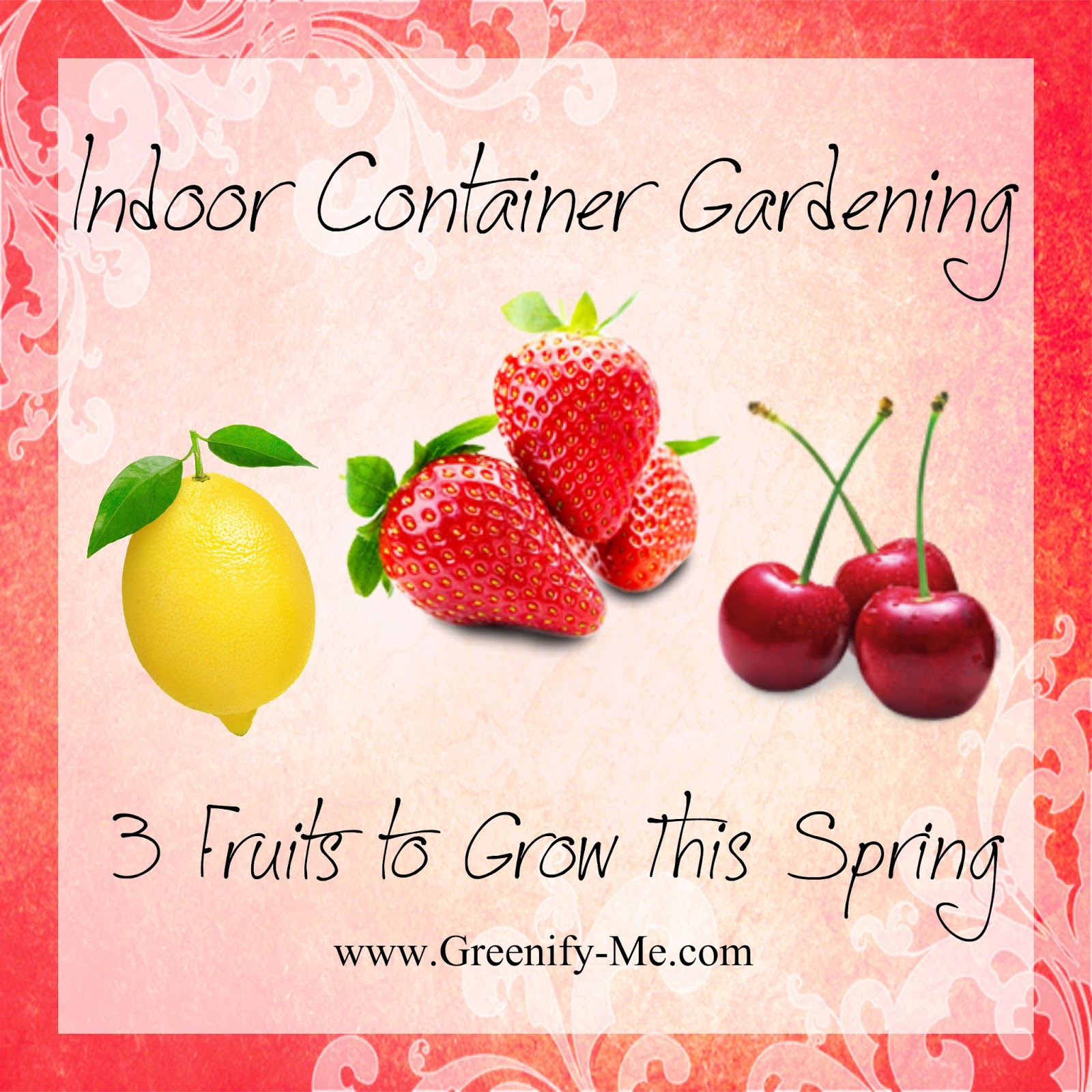 Indoor Container Gardening: 3 Fruits to Grow This Spring - Greenify Me