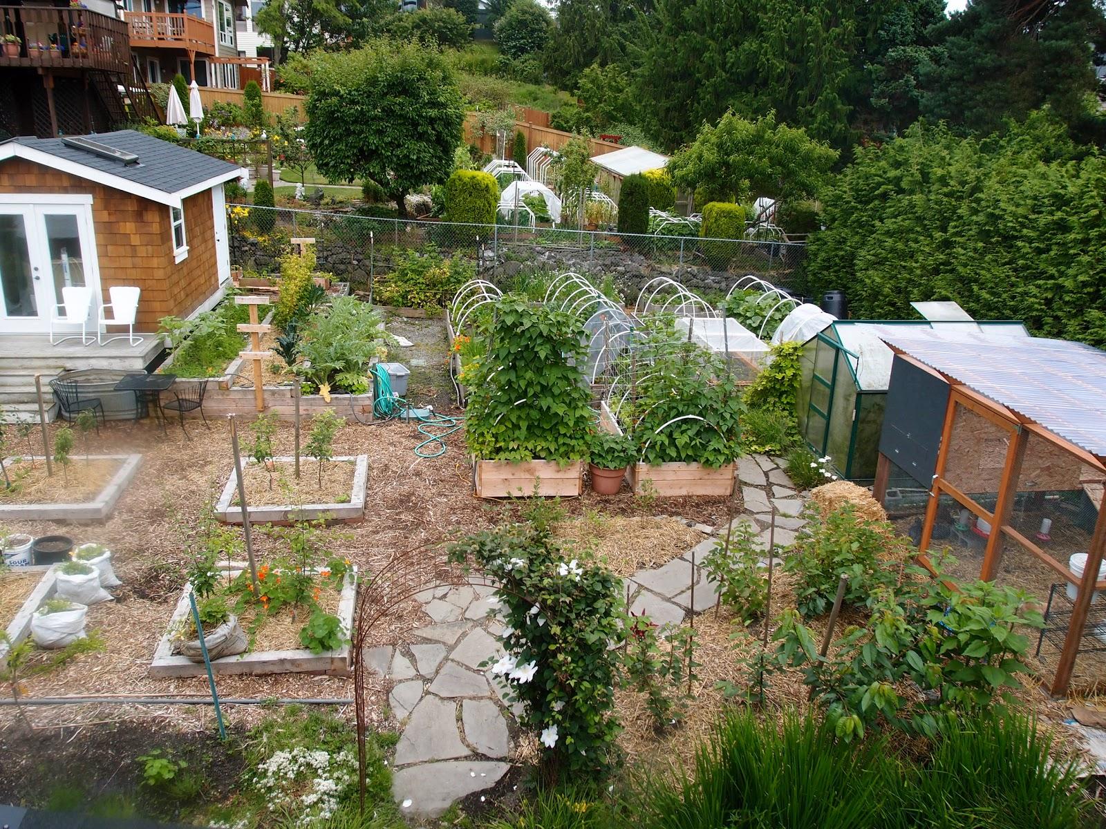 nosy neighbor urban homestead and garden tour 2011 northwest
