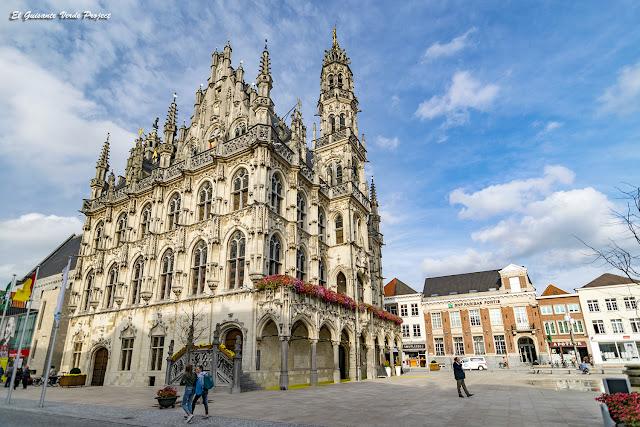 Vista del Ayuntamiento y de la Plaza del Mercado - Oudenaarde, por El Guisante Verde Project