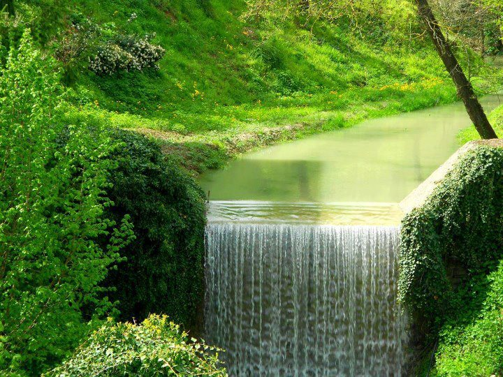 Most Beautiful Green Nature Wallpapers In The World