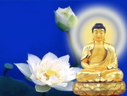 Lời Phật dạy: 8 pháp để sống an lạc