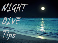 tips night dive