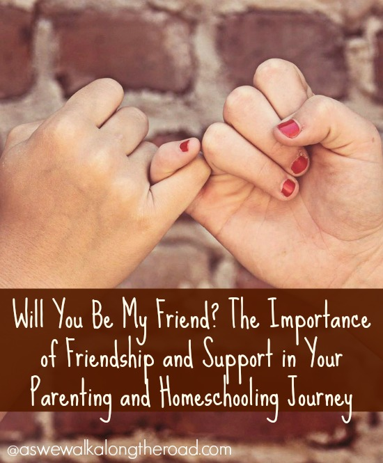 Fellowship and support with other homeschoolers and parents
