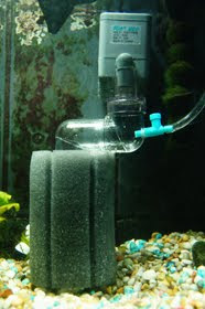 Sponge CO2 Reactor, Diffuser for Planted Freshwater Aquarium