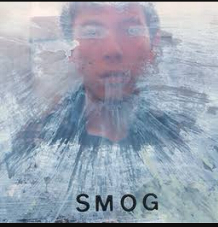 the harmful effects of smog on the human body It can penetrate deeply into the lungs, and when combined with water converts to sulfuric acid which the body is sensitive to it is also one of the main contributors to the formation of small pm carbon monoxide (co): co is an air pollutant that effects health and, in high.