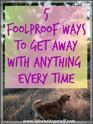 5 Foolproof Ways to Get Away With Anything Every Time
