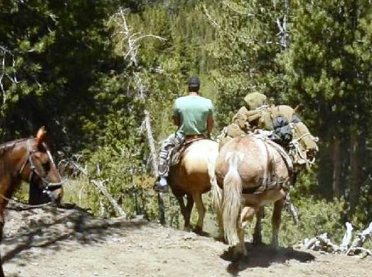 The Mane Point: Ride on! USMC experts and Special Forces saddle up