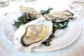 Mes Adresses : Le Duc, les nouveaux menus déjeuner-découverte d'un restaurant de poissons mythique - Paris 14