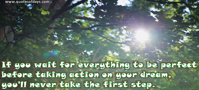 If you wait for everything to be perfect before taking action on your dream, you'll never take the first step.