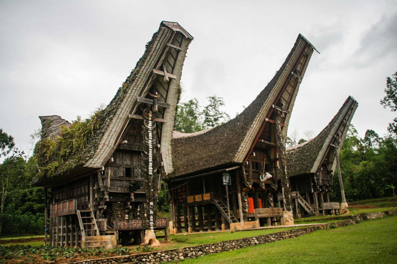 Deretan Tongkonan Karuaya. Terawat dan Asri. Jauh di pelosok Toraja.   iqbal kautsar 4920a468eb