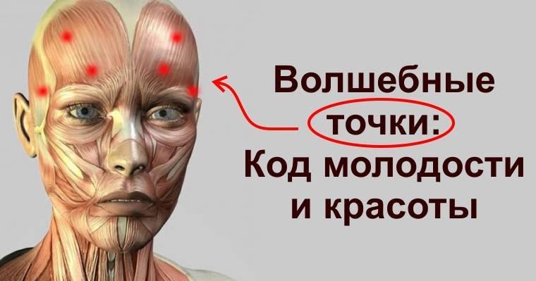точечный массаж молодости на лице