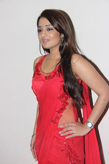 Actress Nikita Thukral Latest Pictures in Red Saree  0002