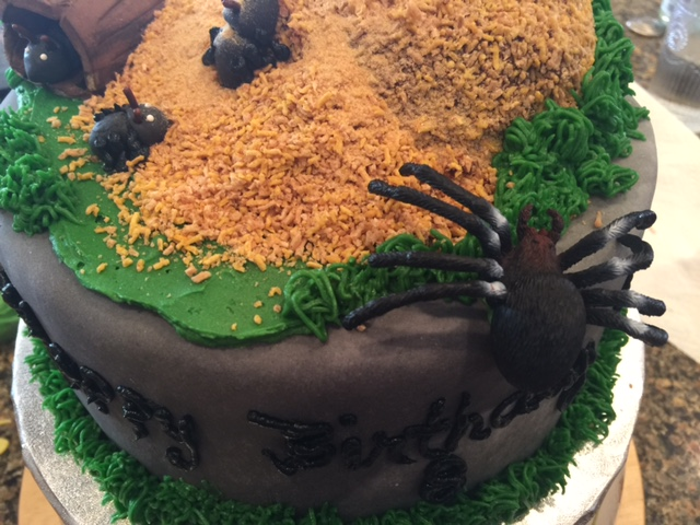 Gamma Susies This N That A Bug Cake For Davy
