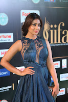 Shriya Saran in Beautiful Transparent Dark Gown IIFA Utsavam Awards 2017 019.JPG