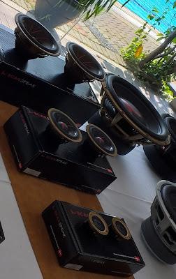 Scanspeak Gold Series