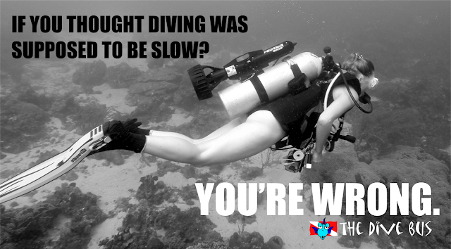 https://thedivebus.blogspot.com/2017/03/because-sometimes-diving-shouldnt-be_19.html