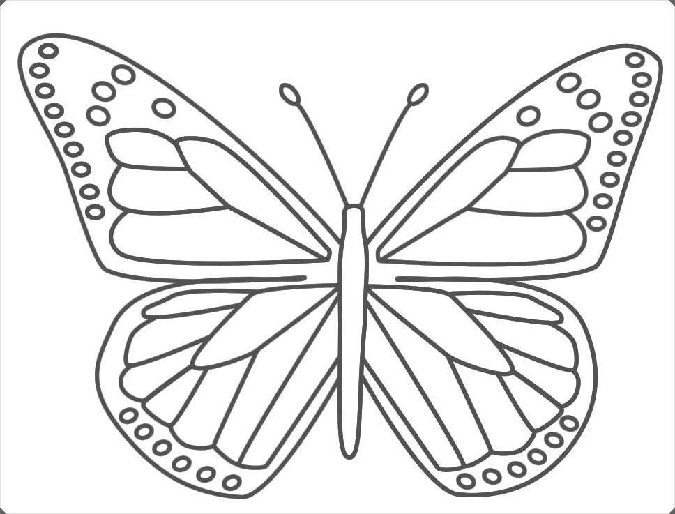 Kelebek Boyama Resimleri Bahattinteymuriom