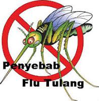 http://emutwae.blogspot.com/2015/06/pengobatan-tradisional-untuk-flu-tulang.html