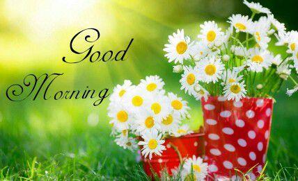 Good Morning Shayari in Hindi  | गुड मॉर्निंग मैसेज हिंदी