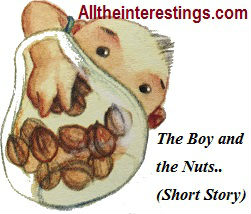 The Boy and the Nuts (Short story), Small stories for pre school kids, Moral stories for Kids, small stories for kids with moral in english, interesting stories, Very Short, Bedtime Stories, learning through bedtime stories