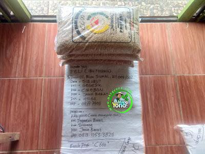 Benih Padi Pesanan    FELI Cirebon, Jabar.    Benih Sebelum di Packing.