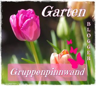 https://www.pinterest.de/topfgartenwelt/der-gartenblog-cluster-garten-gartenblogger-gruppe/
