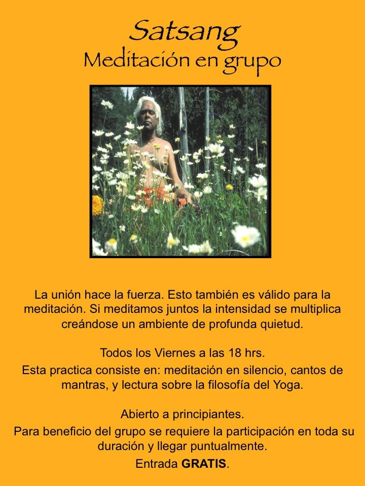 Actividades Ananda Yoga Febrero 2013  4acd6b39080d