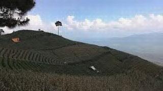 melihat pemandangan waduk darma dari bukit jomblo