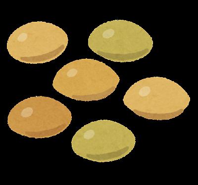 レンズ豆のイラスト